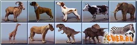 3D модели животных