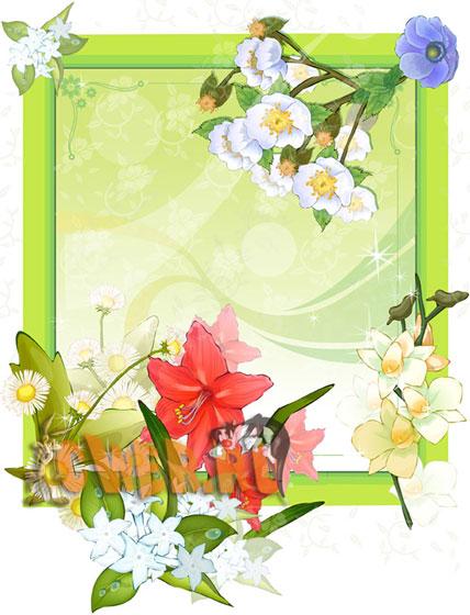 Рамочки для Illustrator - цветы