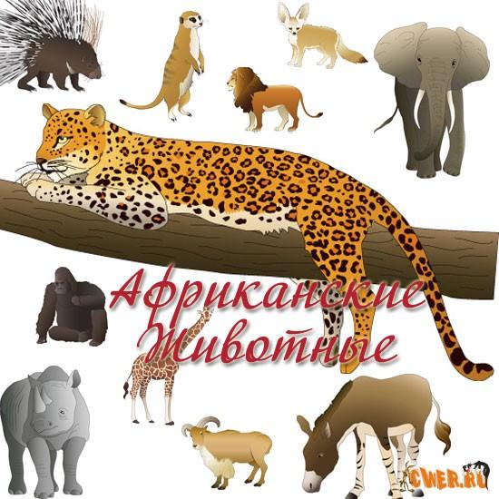 Mammal in Africa