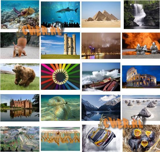 Лучшие фотографии 2007 года по версии Wikimedia Foundation
