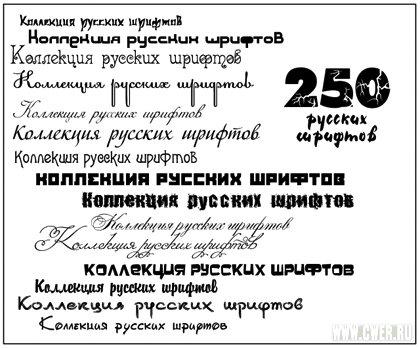 250 русский шрифтов